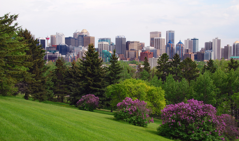 panoramic city view calgary alberta canada vacation packages