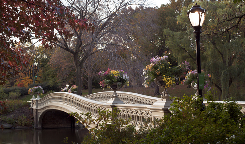 bow bridge in central park in new york city new york usa vacation packages