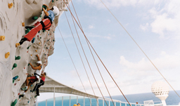 There are many excursions to enjoy while cruising on Royal Caribbean