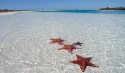 Crystal clear waters are found here - Cayo Largo, Cuba