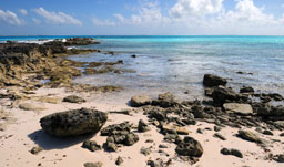 Turks and Caicos Vacations | Packages from Canada
