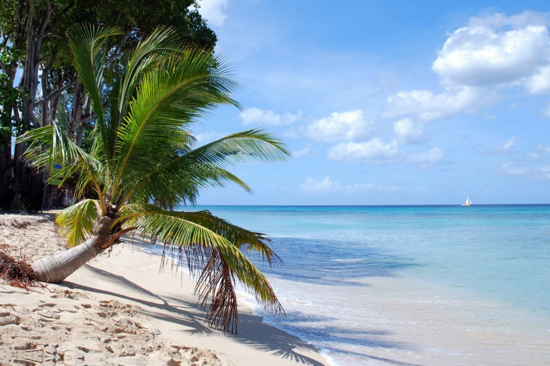 Barbados Vacations | Packages from Canada - tripcentral ca